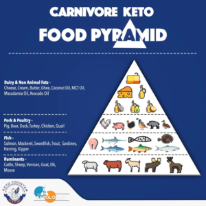 carnivore vs keto diet