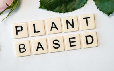 From Plant-based to Paleo, Which Diet is Right for You?